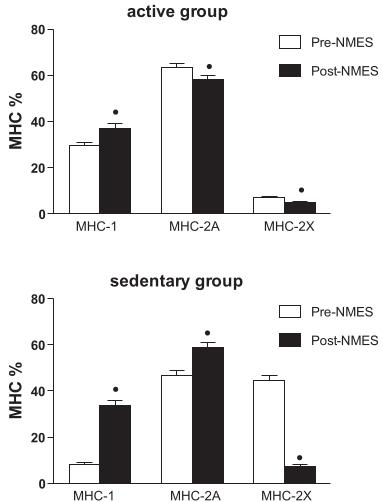 שינויים בסיבי השריר לאחר אימוני EMS אצל פעילים ויושבניים Maffiuletti et al, 2011